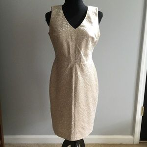 Ann Taylor v-neck shift dress